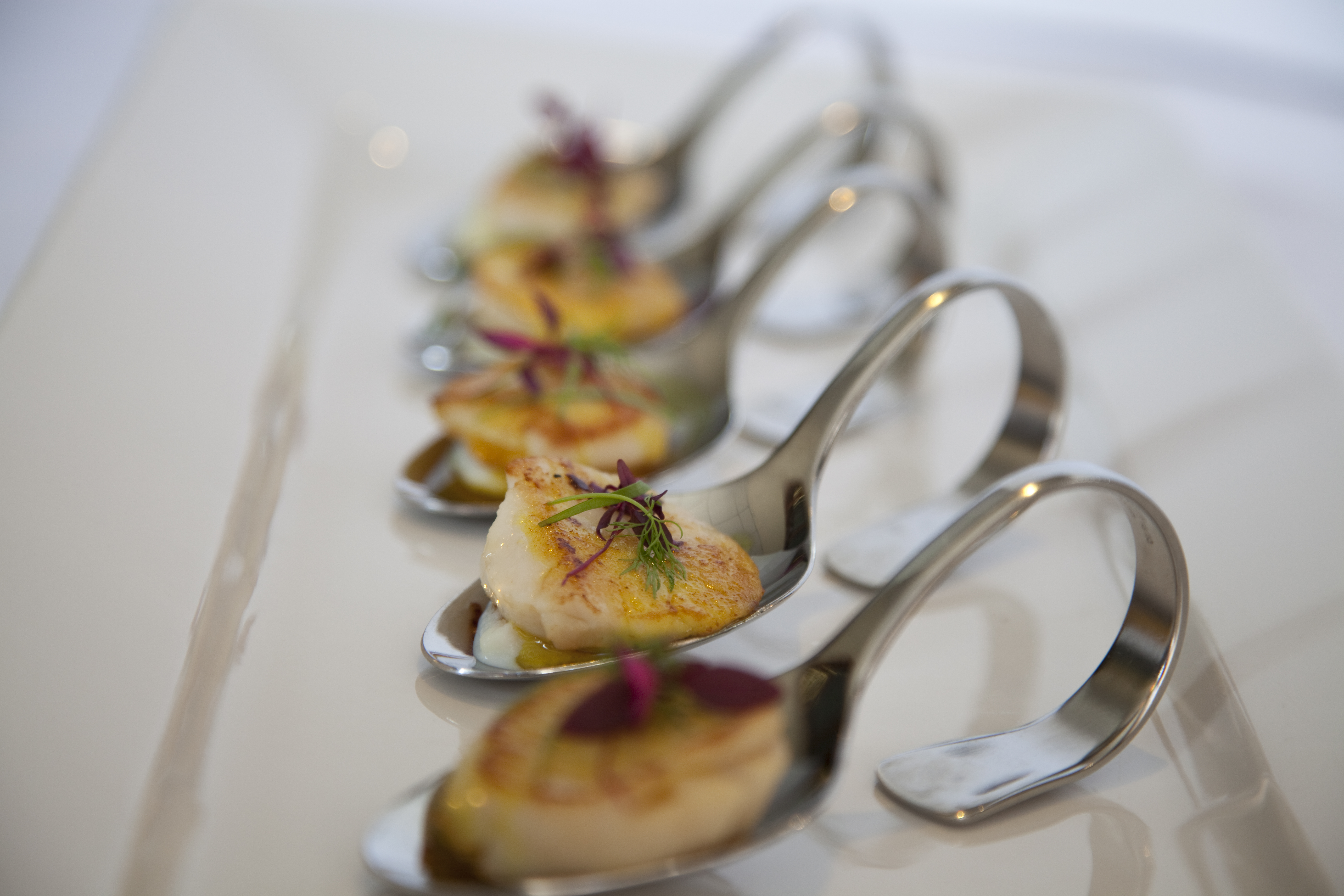 Scott 39 s catering servives for Cold canape menu